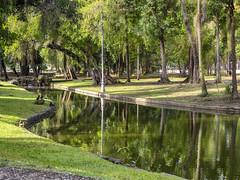 Quinta da Boa Vista à Tardinha... (Leonardo Martins) Tags: jardim garden quinta quintadaboavista palácio realmuseu nacional família manor árvore tree vale valley quiosque kiosk