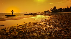 Selfie Nation (Welcome to Paradise) (JDS Fine Art Photography) Tags: selfie beach paradise vacation sunset golden beauty naturalbeauty naturesbeauty culture technology