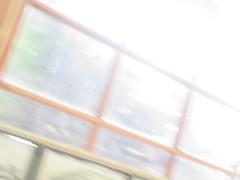 IMG_0640 (earthdog) Tags: 2019 canon canonpowershotsx730hs powershot sx730hs needstags needstitle kelleypark historypark sanjosehistorypark park walkingdistance museum trolleybarn
