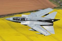 (scobie56) Tags: panavia tornado gr4 xv squadron raf royal air force lossiemouth lossie moray scotland lowlevel farming oil seed rape yellow