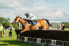 Race 7 BONUS - Ellary-2 (JTW Equine Images) Tags: p2p point pointtopoint knutsford cheshire tabley nh racing horse equine jockey trainer jumps
