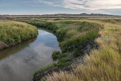 2018-07-SK-Grasslands-01 (gabbert_james) Tags: frenchman river saskatchewan canada grasslands national park