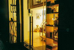 (Boris Kirov Young.Bloods) Tags: dogs dogo street sofia colorplus200 amsterdam kodak olympus mju mjuii 35mm