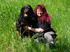 PIC15303-G81 (daniele.hauenstein) Tags: hund hovawart