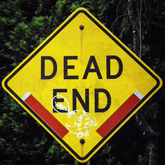 Street Sign / Dead End (swampzoid) Tags: sign yellow deadend dead end street metal square