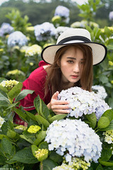 III09799 (HwaCheng Wang 王華政) Tags: hydrangea 人像 外拍 時裝 陽明山 繡球花 md model portraiture sony a7r3 ilce7rm3 a7r mark3 a9 ilce9 24 35 85 gm dress flower