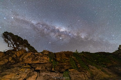 (Almost) Straight Up (nightscapades) Tags: astronomy astrophotography blackheadpoint galacticcore gerroa illawarra kiama milkyway night nightscapes nowra shoalhaven sky southcoastnsw stars wollongong newsouthwales australia