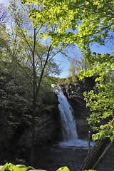 Hinkston Run Falls (George Neat) Tags: hinkston run falls johnstown cambria county pa pennsylvania scenic landscape scenery waterfalls rocks trees water stream creek georgeneat patriotportraits neatroadtrips laurelhighlands