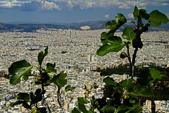 PIC-21 (mercuryriser2005) Tags: city athens greece skyline travel sky plant mountains beauty architecture clouds buildings landscape outside high europe cityscape exterior aerial highup overview bestview lycabettushill highangleview mountlycabettus