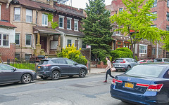 1381_1008FL (davidben33) Tags: brooklyn newyork crownheights streetphotos street photos trees bushes flowers flowering blooming blossoming irises architecture landscape cityscape houses buildings jewish people 718