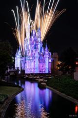 Bursting (mwjw) Tags: magickingdom disney disneyworld orlando florida night nightshot longexposure mwjw markwalter nikond850 rokinon12mm castle