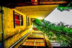 Berlin,zehnter Hinterhof aber gRüN (Pentaxgraf Berlin) Tags: greatphotographers grün hdr mitte hackeschehöfe berlin