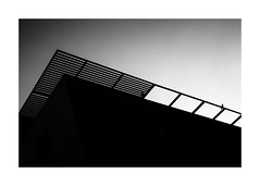 the raven (Armin Fuchs) Tags: arminfuchs würzburg light dark diagonal raven stripes architecture house niftyfifty