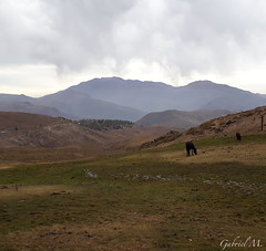 Cascada Leonera (fmendozzam) Tags: mountain chile adventure hikking trekking landscape nature horses paisaje