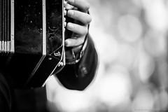 LIVE | Solo Tango (GAZ BLANCO photographer) Tags: lalocurafestival hausdermusik innsbruck music musik tango tangoargentino milonga melingo otrosaires solotango tangospleen beltango architecture gazblanco dream light reflections jazz live photography rock elcachivache tyrol sudtyrol losmilonguitas violin bandoneon piano singer cantante palco stage serbia turchia grecia bosforus bregovic capossella violino doublebass contrabasso keyboard steinway dancing dance reflection acoustic acustica audience elmurotango villareal