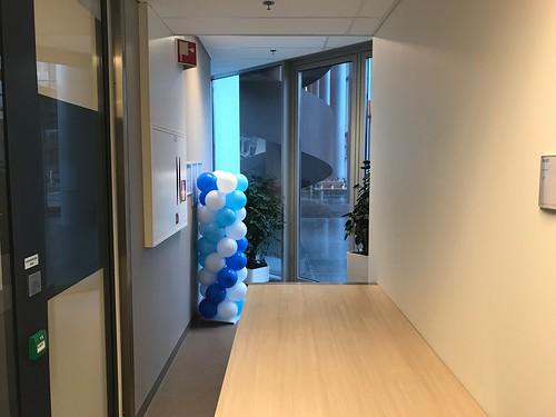 Ballonpilaar Breed Dijkzigt Ziekenhuis Rotterdam