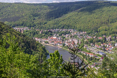 Neckarsteinach in May 2019 (boettcher.photography) Tags: landschaft landscape neckartal badenwürttemberg hessen ländergrenze dilsberg neckargemünd burg castle voderburg mittelburg vierburgenstadt frühling spring mai may sashahasha wald forest boettcherphotography boettcherphotos 2019