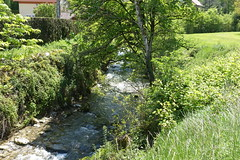 Laudon river @ Hike to Vallée du Laudon (*_*) Tags: 2019 printemps spring afternoon may hiking mountain montagne nature randonnee walk marche europe france hautesavoie 74 annecy saintjorioz laudon bauges circuitdulaudon loop valléedulaudon savoie