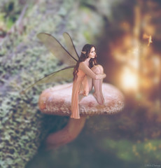 New Wings (Felicia Brenning) Tags: fairy wings fairyart minifairy littlefairy fairfolk fae faerie faery pixie oknytt väsen fe älva fairytalephotography fairytale fairylights manipulation photomanipulation surreal surrealism surrealphotography surreality miniature miniaturephotography miniscene miniaturescene nature mushroom sunset forest woods photographyart artsy dream dreamy conceptual conceptualphotography conceptualportrait conceptualportraiture creative creativephotography creativeportrait fantasy fantasyphotography fantasyportrait selfie selfportrait selfportraiture photoshop imagination imaginative folklore fable fiction mythical nikon nikond5600 nikonphotography feliciabrenning flickr sony sonyalpha sonyslta57 sonya57