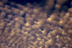 nuvole (clouds) (pjarc) Tags: europe europa italy italia cielo sky nuvole clouds texture forms forme colors colori foto photo nikon dx 2010