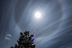 Solar halo (Daniel Boca) Tags: sunlight sun outdoor outside cirrus cirrostratus nature naturephotography naturepics naturephotograph reflection refraction icecrystals weather meteorology blue bluesky clouds tree