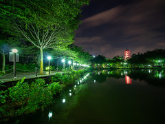 Chinese garden (wonglp) Tags: clubsnap olympus 845mmfilters landscape photospheresg singapore hnyfiltersg hy landscapephotography filters