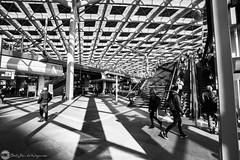 the Hague central station (bjdewagenaar) Tags: photography photograph photographer photooftheday sony sonyalpha sonyphotographer sonyimages sonya sonya7riii sonygm sonygmaster wideangle blackandwhite blackwhite bw mono monochrome monoart city urban street streetphotography thehague dutch holland raw lightroom