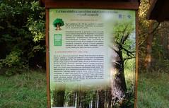 2012-10-02 okolice Loryńca  (132) (aknad0) Tags: polska loryniec informacja krajobraz zdjęcia