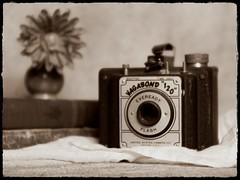 Still Life (DayBreak.Images) Tags: tabletop stilllife vase flower vintage antique books camera cheese cloth canondslr meyeroptic trioplan 50mm ringlight photoscape bw sepia border home