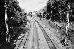 Trier, Germany (AperturePaul) Tags: germany europe nikon d600 black white train trier tracks rails