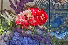 Chelsea in Bloom - Under the Sea (gary8345) Tags: flower london unitedkingdom flowers england chelsea 2019 britain londonist snapseed uk greatbritain