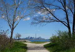 """""""Wake up today knowing that whatever happens, you can handle it."""" ~Unknown (Trinimusic2008 -blessings) Tags: trinimusic2008 judymeikle nature path trees cntower lake water spring may 2019 walk today humberbaypark waterfrontrecreationaltrail asharedpath public community gratitude sunshine thanks happiness smiles blueskies toronto to ontario canada"""