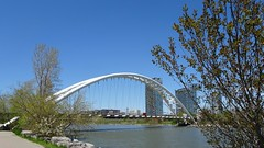 """""""The body heals with play, the mind heals with laughter, and the spirit heals with joy."""" (Trinimusic2008 -blessings) Tags: trinimusic2008 judymeikle nature bridge archedbridge spring may 2019 walk today humberbaypark waterfrontrecreationaltrail asharedpath public path community gratitude sunshine thanks happiness smiles blueskies toronto to ontario canada"""