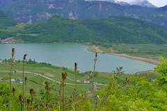 _DSF9778 (mar.colla) Tags: lago caldaro castelvecchio lagodicaldaro stradadelvino altoadige