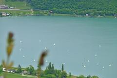 _DSF9776 (mar.colla) Tags: lago caldaro castelvecchio lagodicaldaro stradadelvino altoadige