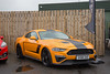 Scottish Ford Live & Hot Hatch Track Day