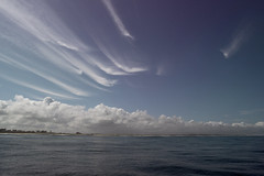 Painted Sky (waves_and_wonders) Tags: monterey bay blue nautical sea ocean coast coastal photography art fineart waves water beach sky nature clouds california central centralcoast mosslanding harbor oceanic seascape seascapes landscapes outdoors