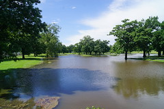 Golf Course Under Water (tomcomjr) Tags: sonyilca77m2 sal1855 lincolnpark flooding cowcreek