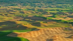 View from Steptoe Butte 5525 B (jim.choate59) Tags: jchoate on1pics landscape scenic steptoebutte whitmancounty washingtonstate hills palouse magichour goldenhour serene rural agriculture fields wheatfields