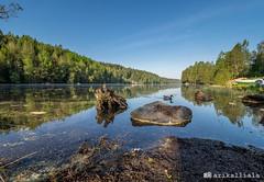 Morning at Lake Kaukajärvi. (Ari Kalliala) Tags: kangasala kaukajärvi suomi finland kevät spring aamu morning olympus omdem1mk2 mzuiko714pro