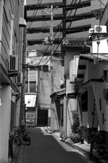 Osaka Landscape (masamiy21) Tags: adonalrodinal oriental newseagull100 retinaiic schneiderkreuznach f28 50mm xenon