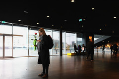 The young woman with a rose (erichudson78) Tags: island islande iceland reykjavik harpa canoneos6d silhouette streetphotography scènederue cellphone smartphone woman femme contrejour backlight sacàdos backpack