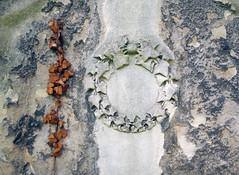 Withered (macplatti) Tags: xt2 xf18mmf2r wien urban city architecture culture history visit travel streetfriedhof stmarxerfriedhof cemetery efeu sandstone sandstein tombstone grabstein old verwittert grey grau braun brown austria