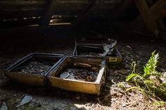 DSC_1507 (The Archives of Decay) Tags: urbanexploring urbexphotography udssr lostplaces abandonedplaces abandoned verlassen abandonedmilitarybuilding sovietunion sowjetunion gssdwgt gssd kaserne sovietunionabandoned