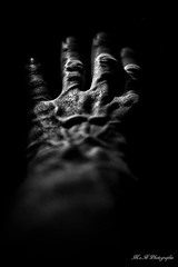 Main Veineuse (arrif-mehdi) Tags: main veineuse veines sombre dark light humain human corps vision look meh photographie amazing beautiful hand mains noir et blanc expression black white lumieres lights homme doigts bnw force control