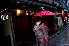 Maiko dans les rues de Gion (arrif-mehdi) Tags: maiko rue ruelle pluie rain japon japan femme asiatique nippon meh photographie instant art gion kyoto kyotoites kimono tradition traditionnel marche people maison house japonaise asie asia asian