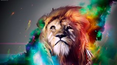here (yousafbhutta@ymail.com) Tags: lion king animal awesome