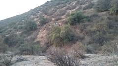 trekking - 4