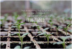 James Baldwin Not everything that is faced can be changed, but nothing can be changed until it is faced. (symphony of love) Tags: jamesbaldwin change changequote changeourselves changetheworld changeit quoteonchange picturequoteonchange symphonyoflove sol omrekindlingthelightwithin om quotation quote quoteoftheday quotetoliveby quotes qotd inspirationalquote inspirational inspiringquotes inspiration motivationalquotes motivatingquotes motivation dailymotivation dailyinspiration dailyquote potd picturequote picture pictureoftheday pictures