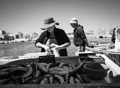 merlans de matinée noir et blanc (matraffy) Tags: marseille vieuxport pêcheur noiretblanc